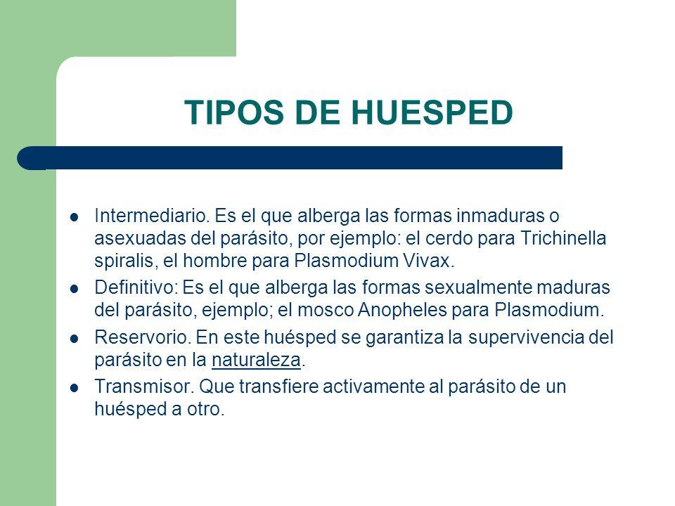 TIPOS DE HUESPED
