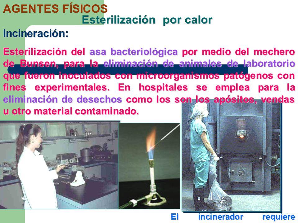 Esterilización por calor