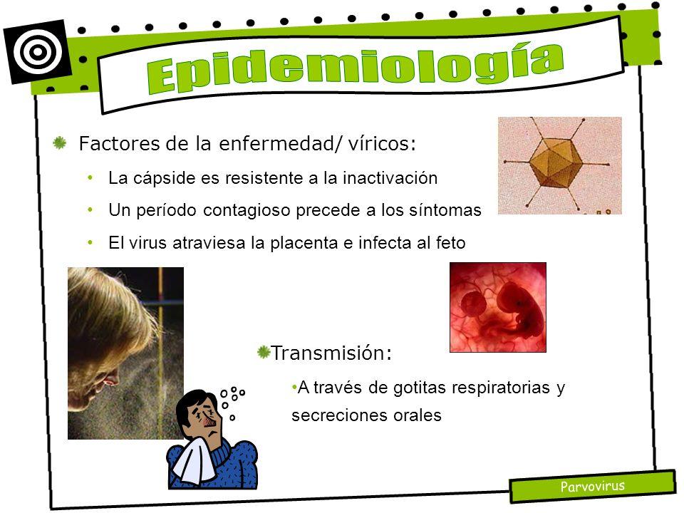 Epidemiología Factores de la enfermedad/ víricos: Transmisión: