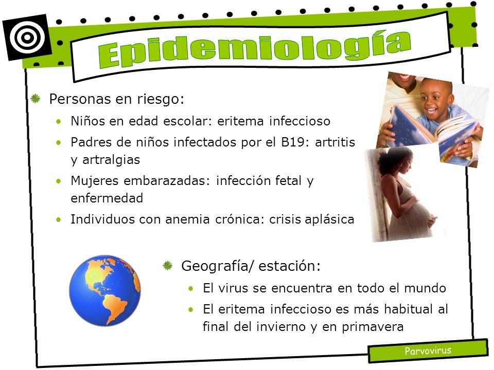 Epidemiología Personas en riesgo: Geografía/ estación: