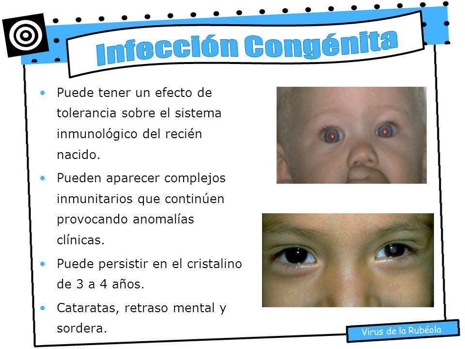 Infección Congénita Puede tener un efecto de tolerancia sobre el sistema inmunológico del recién nacido.