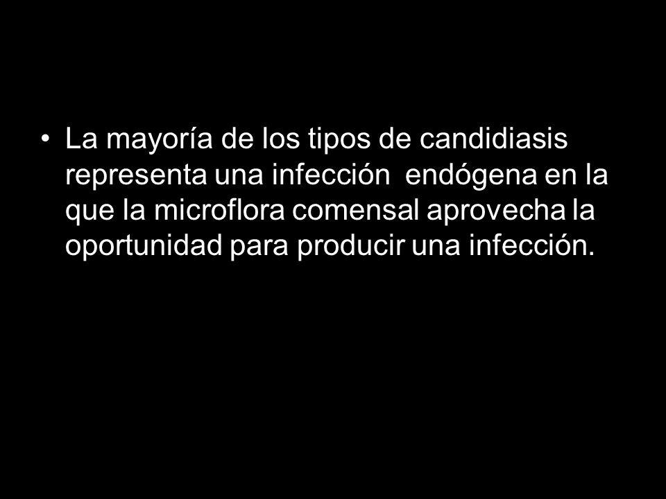 La mayoría de los tipos de candidiasis representa una infección endógena en la que la microflora comensal aprovecha la oportunidad para producir una infección.
