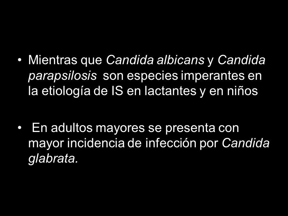 Mientras que Candida albicans y Candida parapsilosis son especies imperantes en la etiología de IS en lactantes y en niños