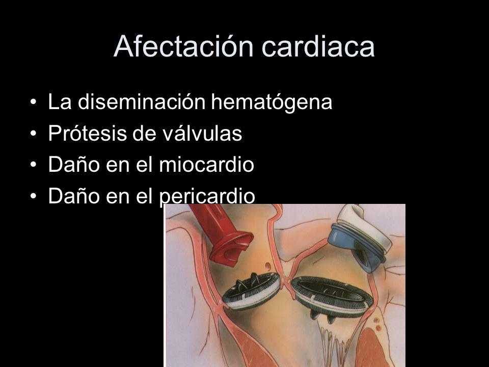 Afectación cardiaca La diseminación hematógena Prótesis de válvulas