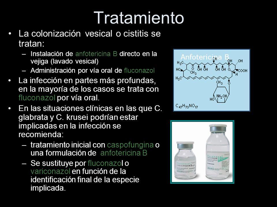 Tratamiento La colonización vesical o cistitis se tratan: