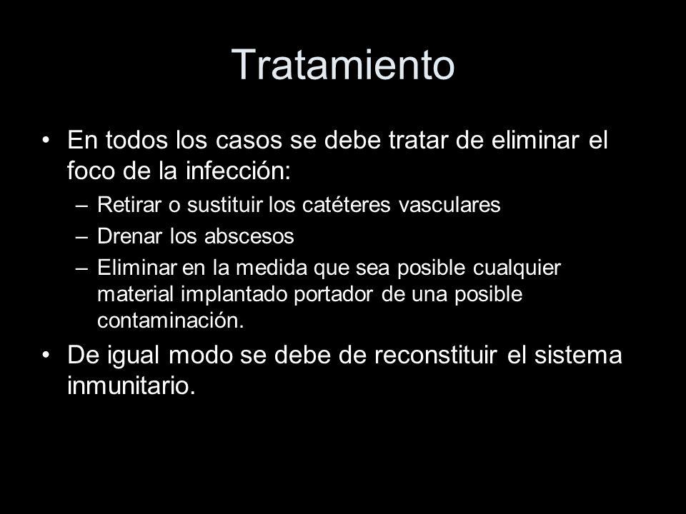 Tratamiento En todos los casos se debe tratar de eliminar el foco de la infección: Retirar o sustituir los catéteres vasculares.