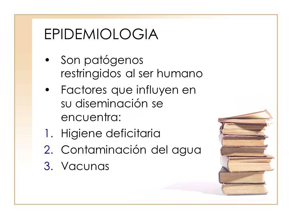 EPIDEMIOLOGIA Son patógenos restringidos al ser humano
