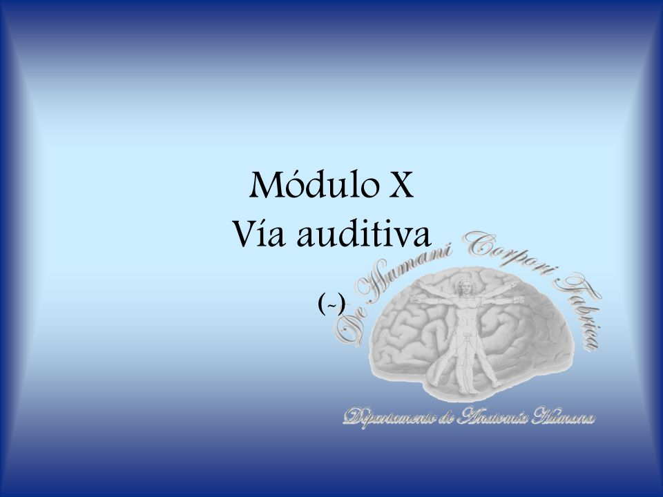 Módulo X Vía auditiva (-)