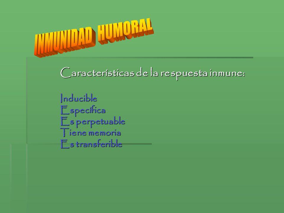 INMUNIDAD HUMORAL Características de la respuesta inmune: Inducible