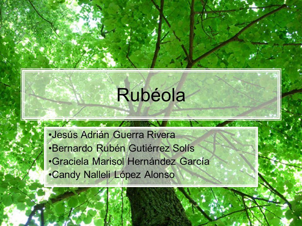 Rubéola Jesús Adrián Guerra Rivera Bernardo Rubén Gutiérrez Solís