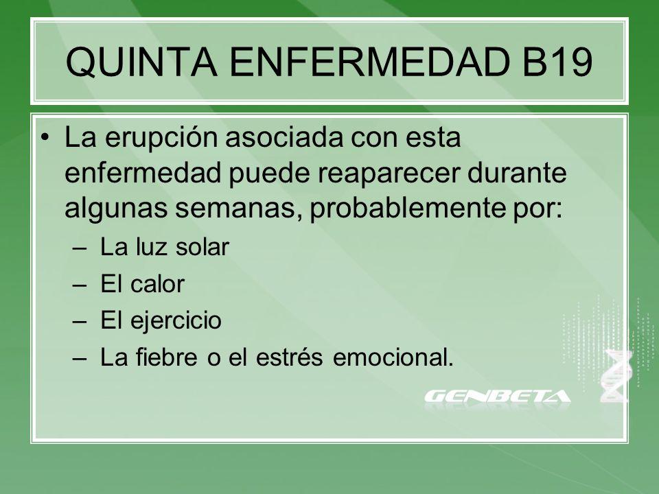 QUINTA ENFERMEDAD B19 La erupción asociada con esta enfermedad puede reaparecer durante algunas semanas, probablemente por:
