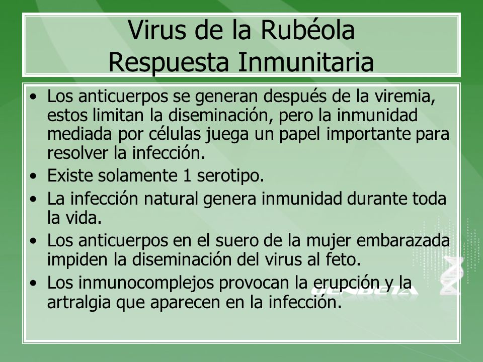 Virus de la Rubéola Respuesta Inmunitaria