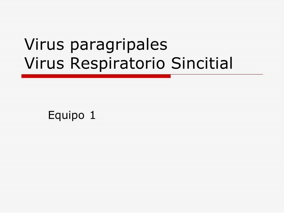 Virus paragripales Virus Respiratorio Sincitial