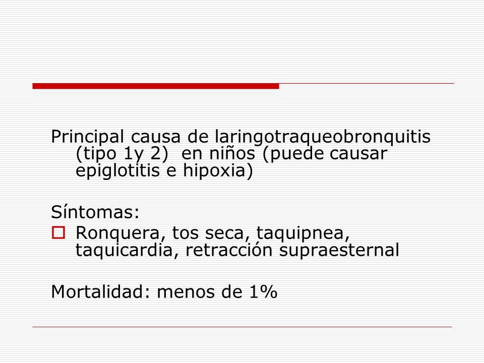 Principal causa de laringotraqueobronquitis (tipo 1y 2) en niños (puede causar epiglotitis e hipoxia)