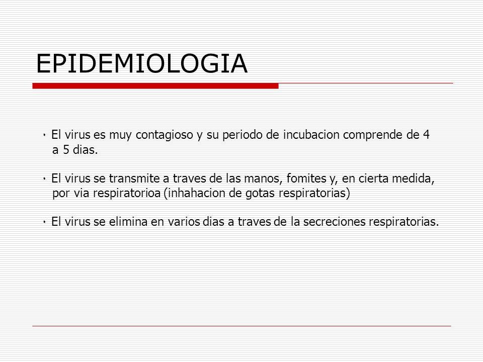 EPIDEMIOLOGIA ٠ El virus es muy contagioso y su periodo de incubacion comprende de 4. a 5 dias.