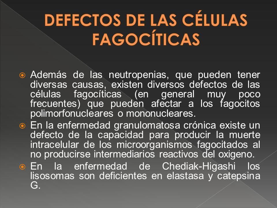 DEFECTOS DE LAS CÉLULAS FAGOCÍTICAS