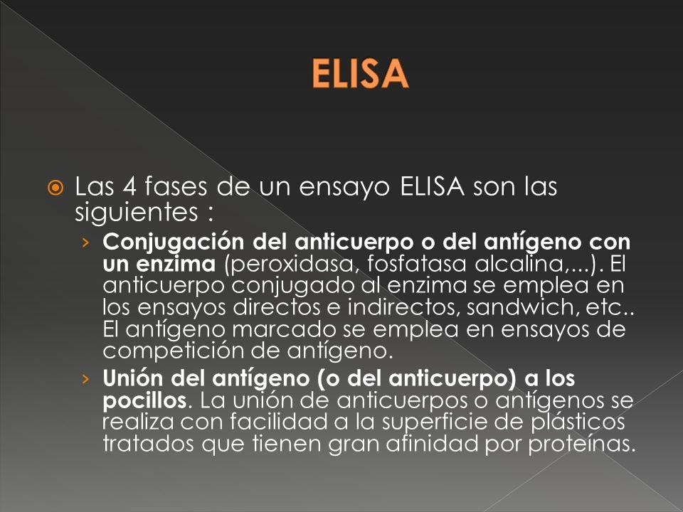 ELISA Las 4 fases de un ensayo ELISA son las siguientes :