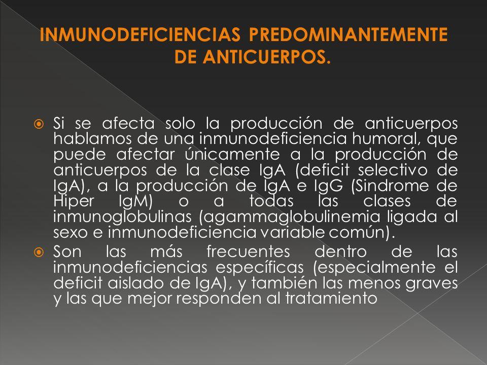 INMUNODEFICIENCIAS PREDOMINANTEMENTE DE ANTICUERPOS.
