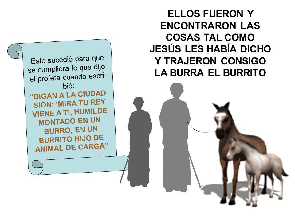 ELLOS FUERON Y ENCONTRARON LAS COSAS TAL COMO JESÚS LES HABÍA DICHO Y TRAJERON CONSIGO LA BURRA EL BURRITO