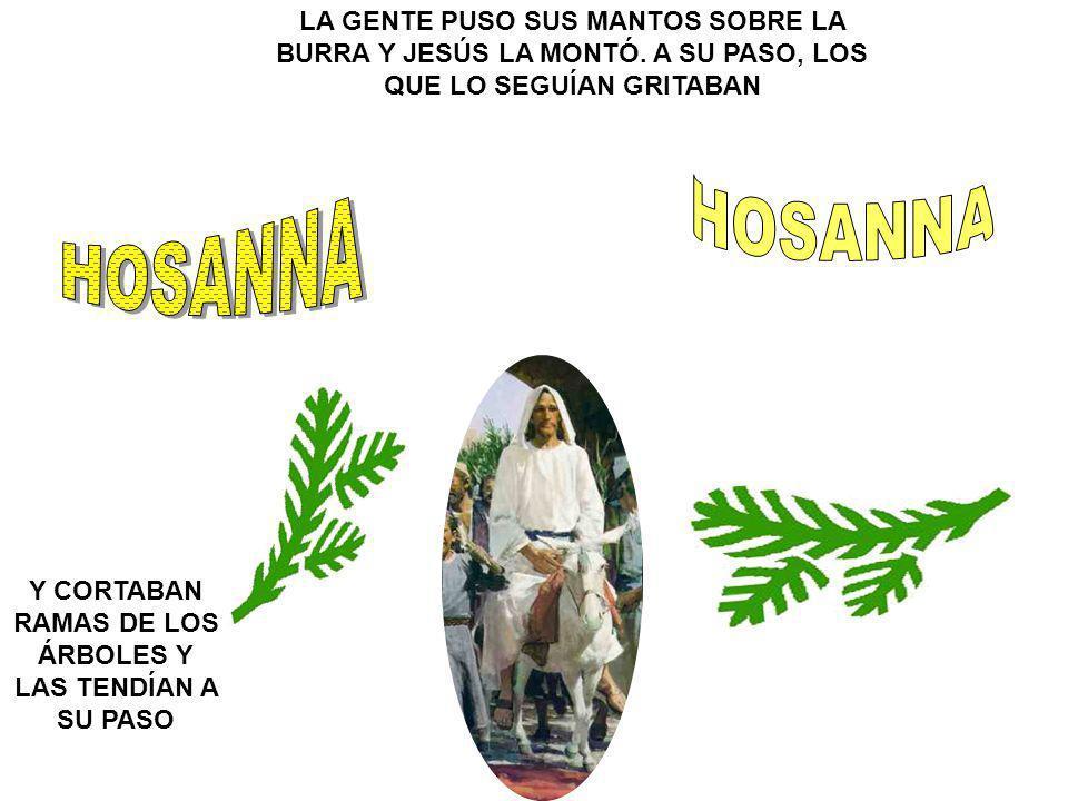 Y CORTABAN RAMAS DE LOS ÁRBOLES Y LAS TENDÍAN A SU PASO