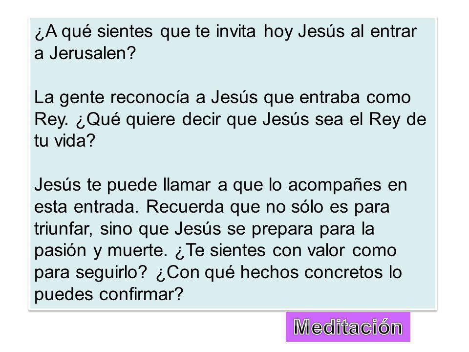 ¿A qué sientes que te invita hoy Jesús al entrar a Jerusalen