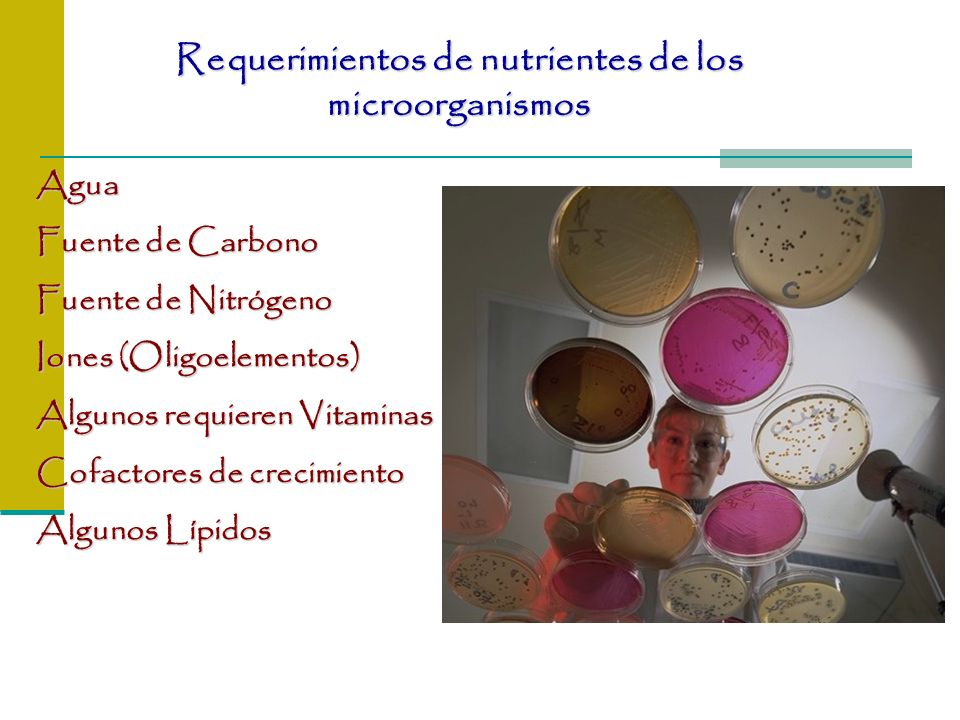 Requerimientos de nutrientes de los microorganismos