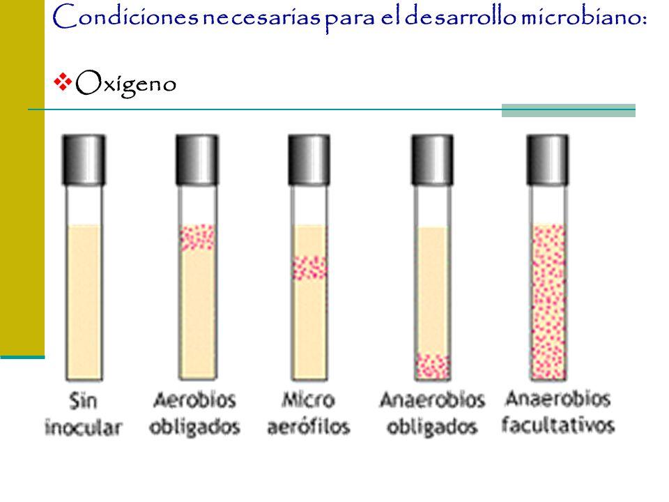Condiciones necesarias para el desarrollo microbiano:
