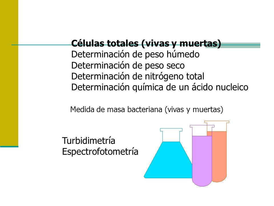 Células totales (vivas y muertas) Determinación de peso húmedo