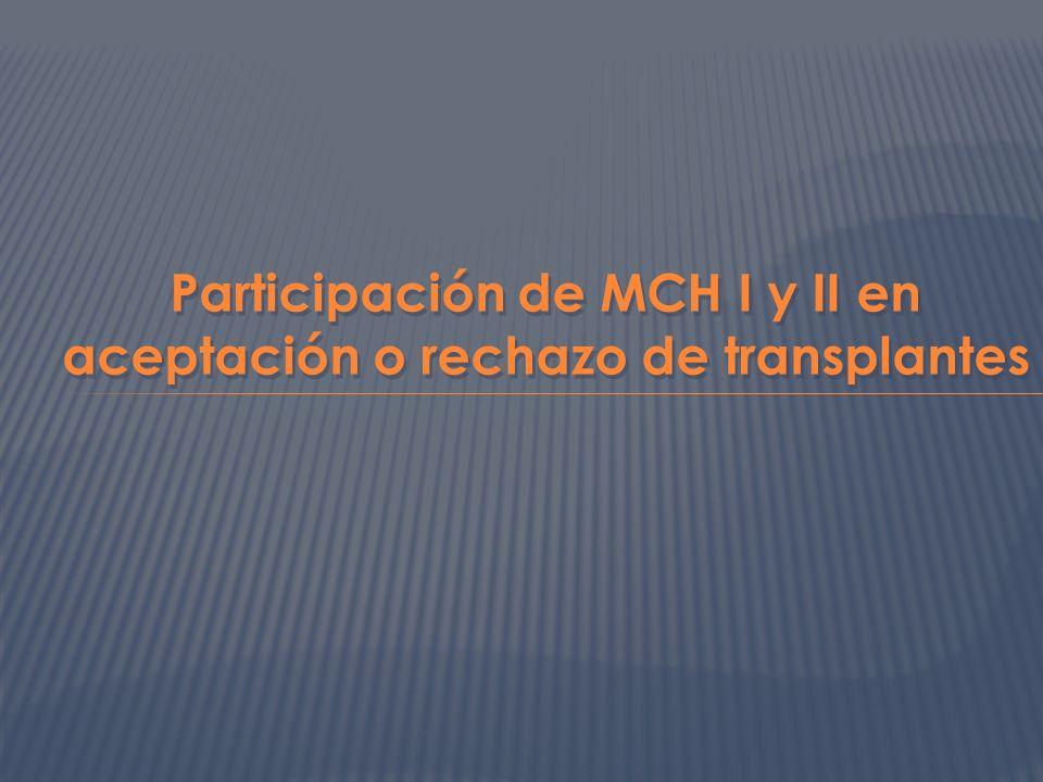 Participación de MCH I y II en aceptación o rechazo de transplantes