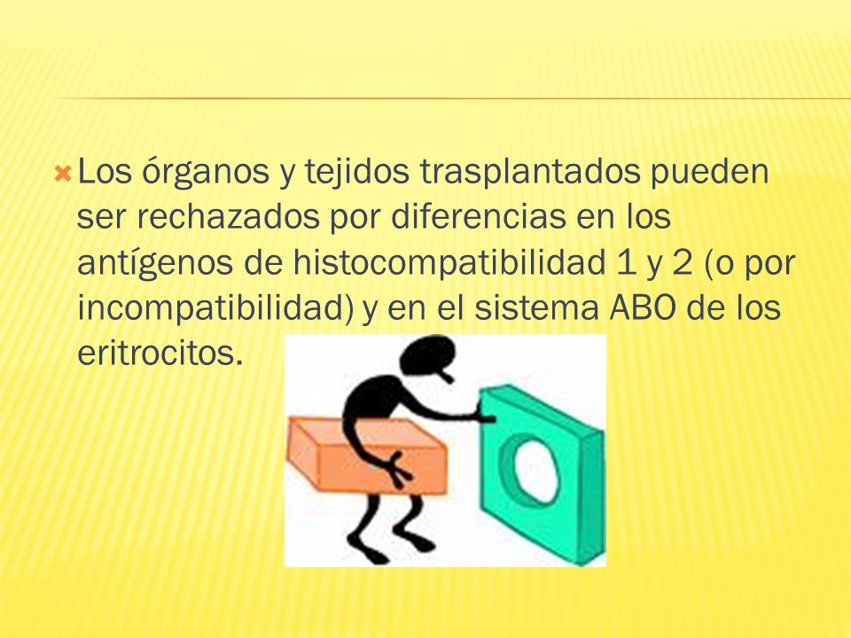 Los órganos y tejidos trasplantados pueden ser rechazados por diferencias en los antígenos de histocompatibilidad 1 y 2 (o por incompatibilidad) y en el sistema ABO de los eritrocitos.