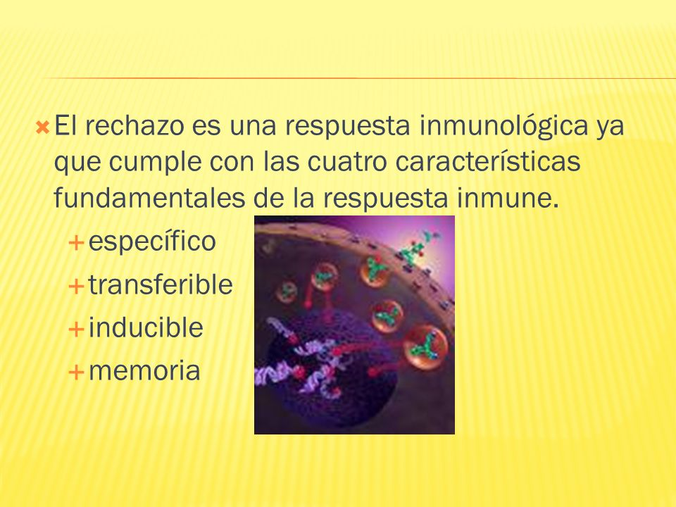 El rechazo es una respuesta inmunológica ya que cumple con las cuatro características fundamentales de la respuesta inmune.