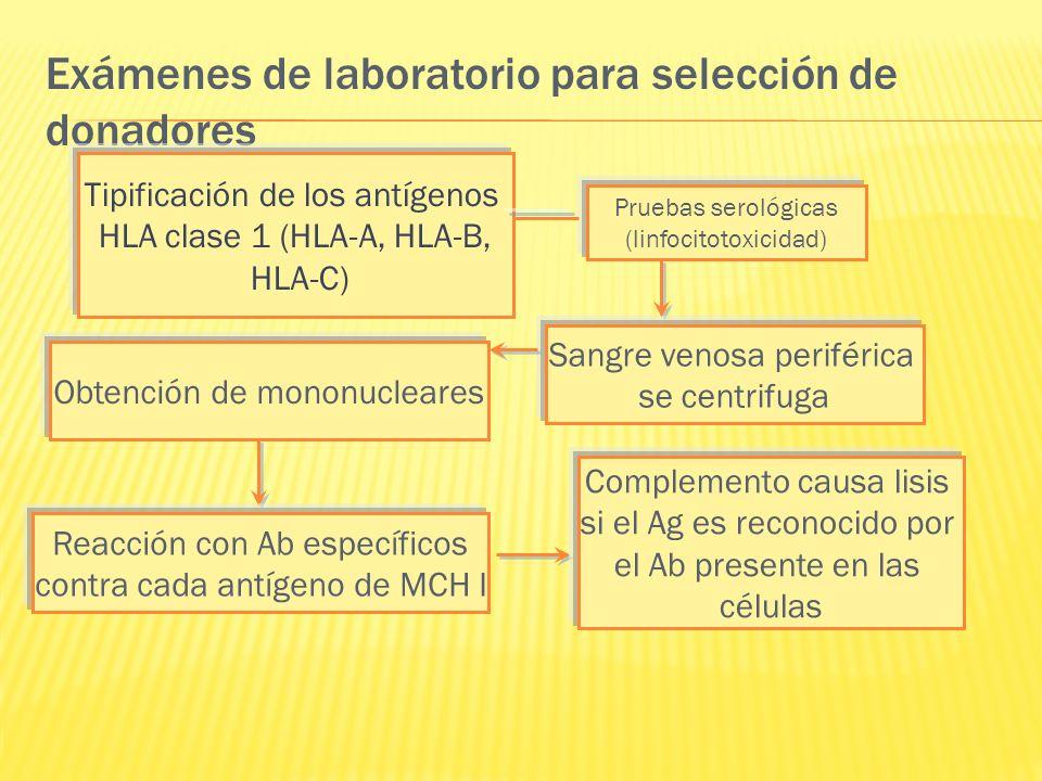 Exámenes de laboratorio para selección de donadores