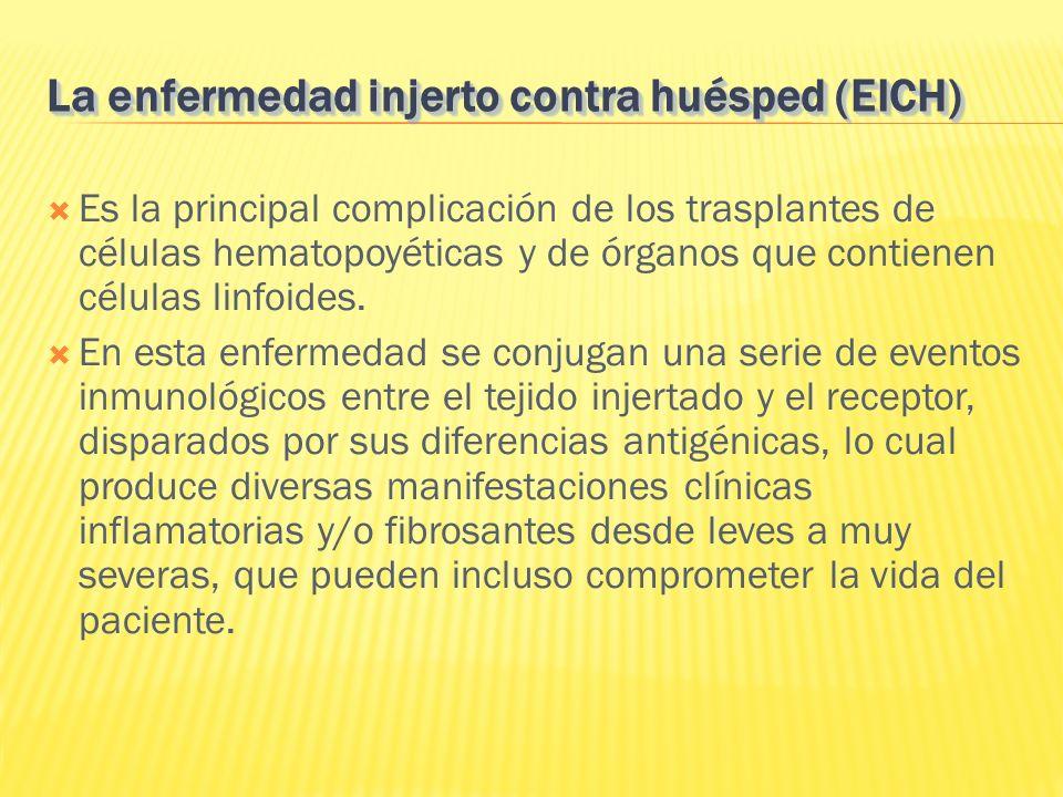 La enfermedad injerto contra huésped (EICH)