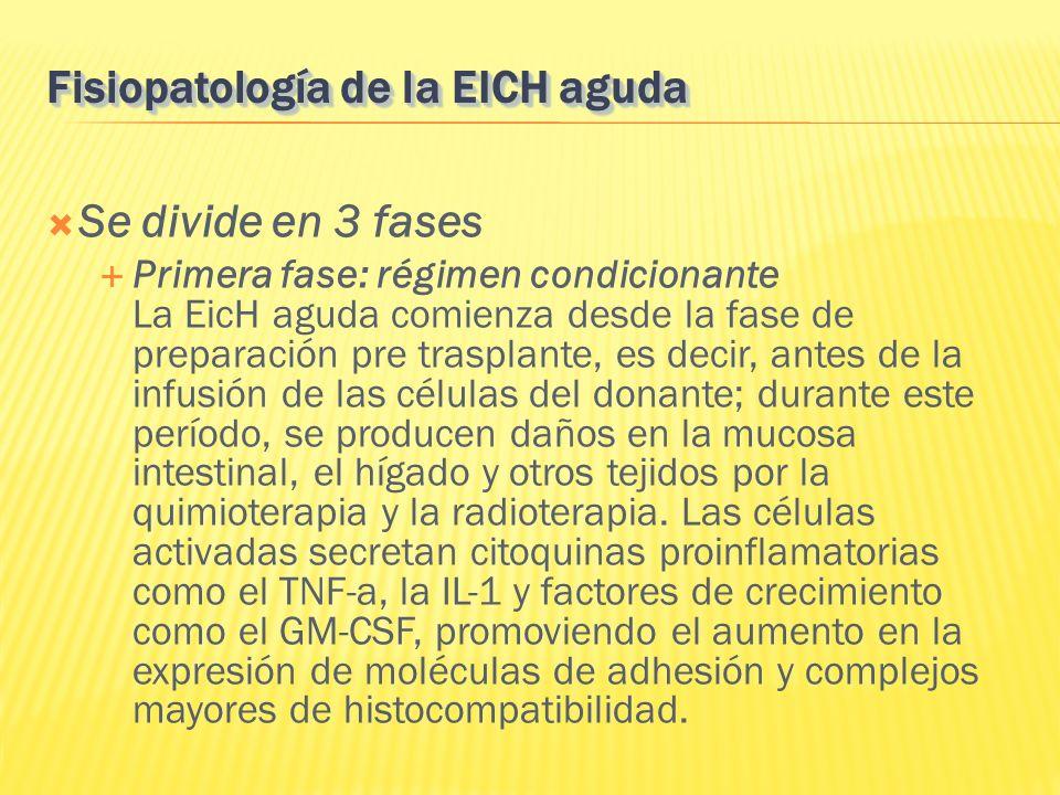 Fisiopatología de la EICH aguda