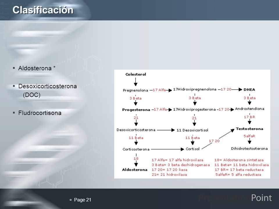 Clasificación Aldosterona * Desoxicorticosterona (DOC) Fludrocortisona