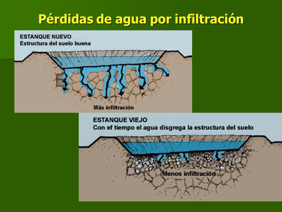 Pérdidas de agua por infiltración