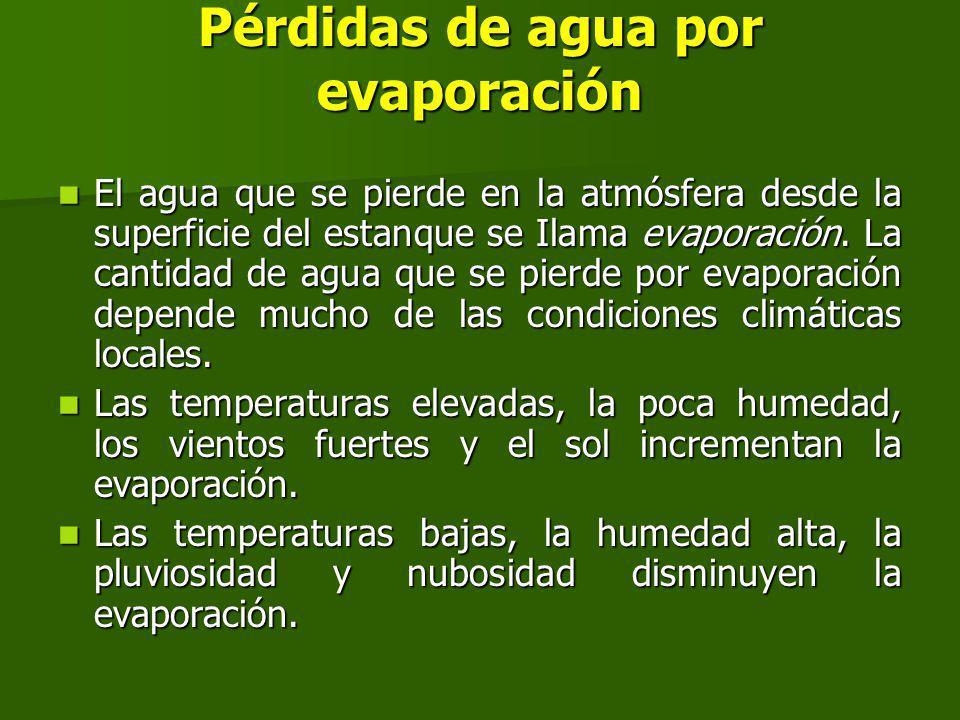Pérdidas de agua por evaporación