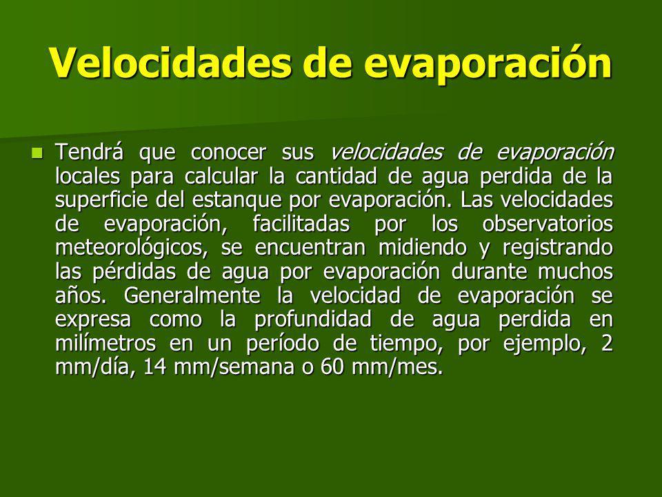 Velocidades de evaporación