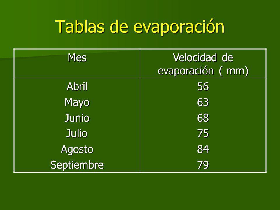 Velocidad de evaporación ( mm)