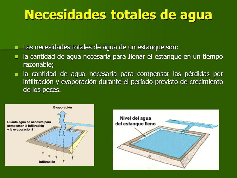 Necesidades totales de agua