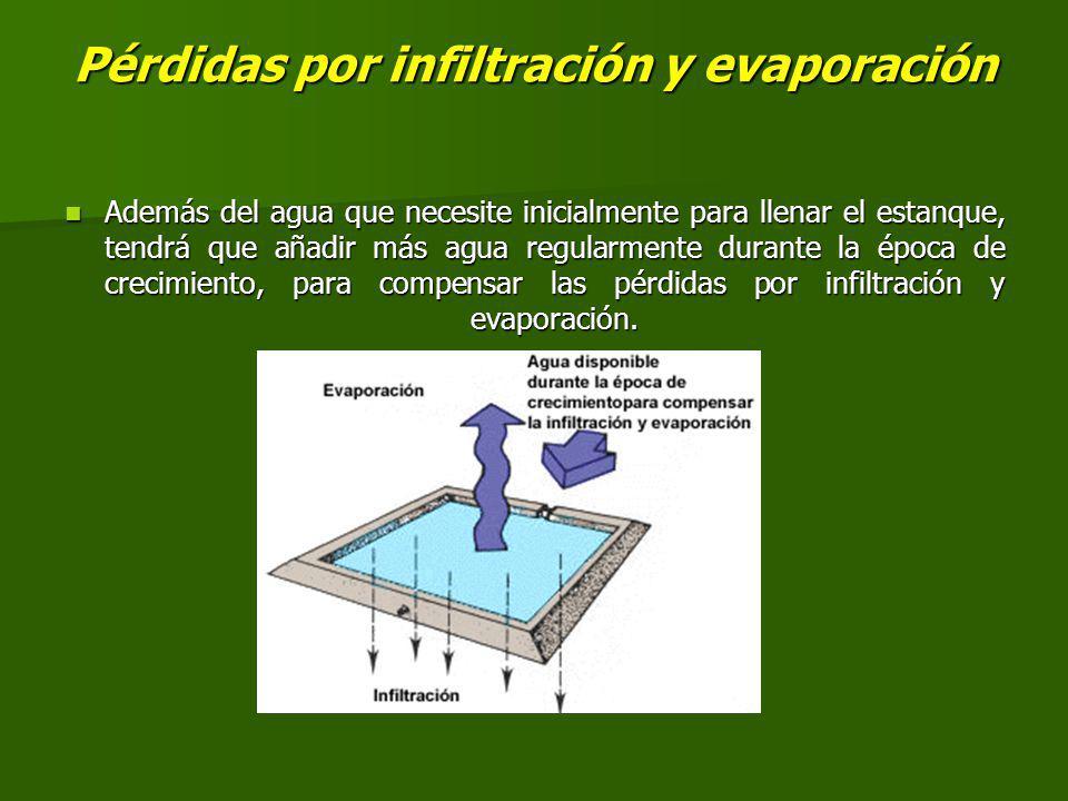 Pérdidas por infiltración y evaporación