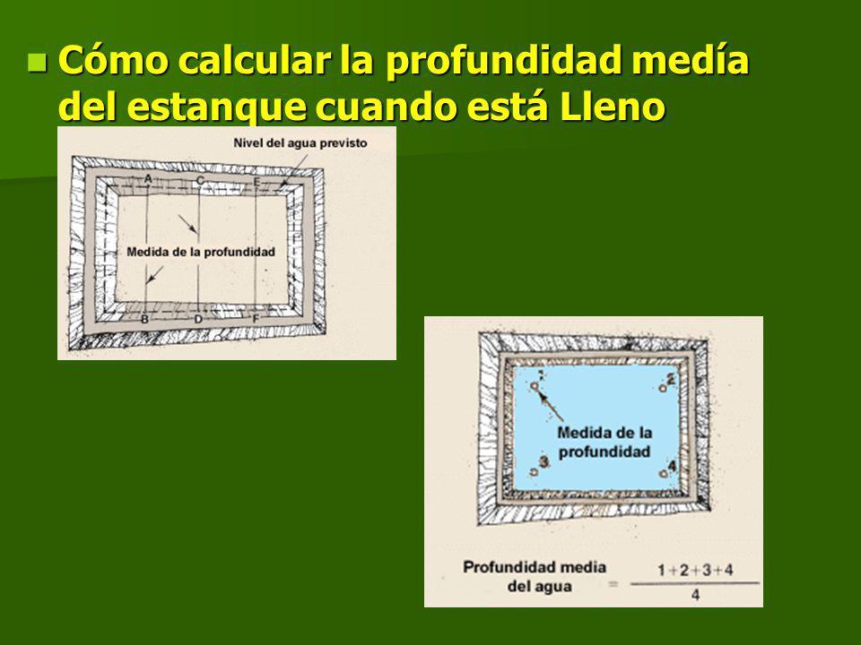 Cómo calcular la profundidad medía del estanque cuando está Lleno