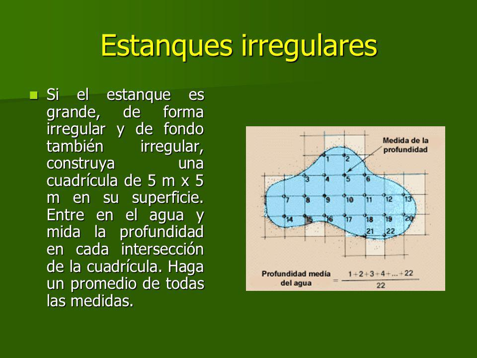 Estanques irregulares
