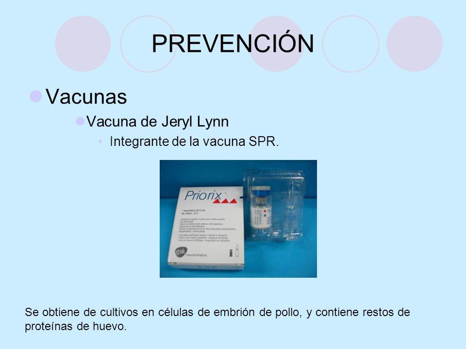 PREVENCIÓN Vacunas Vacuna de Jeryl Lynn Integrante de la vacuna SPR.