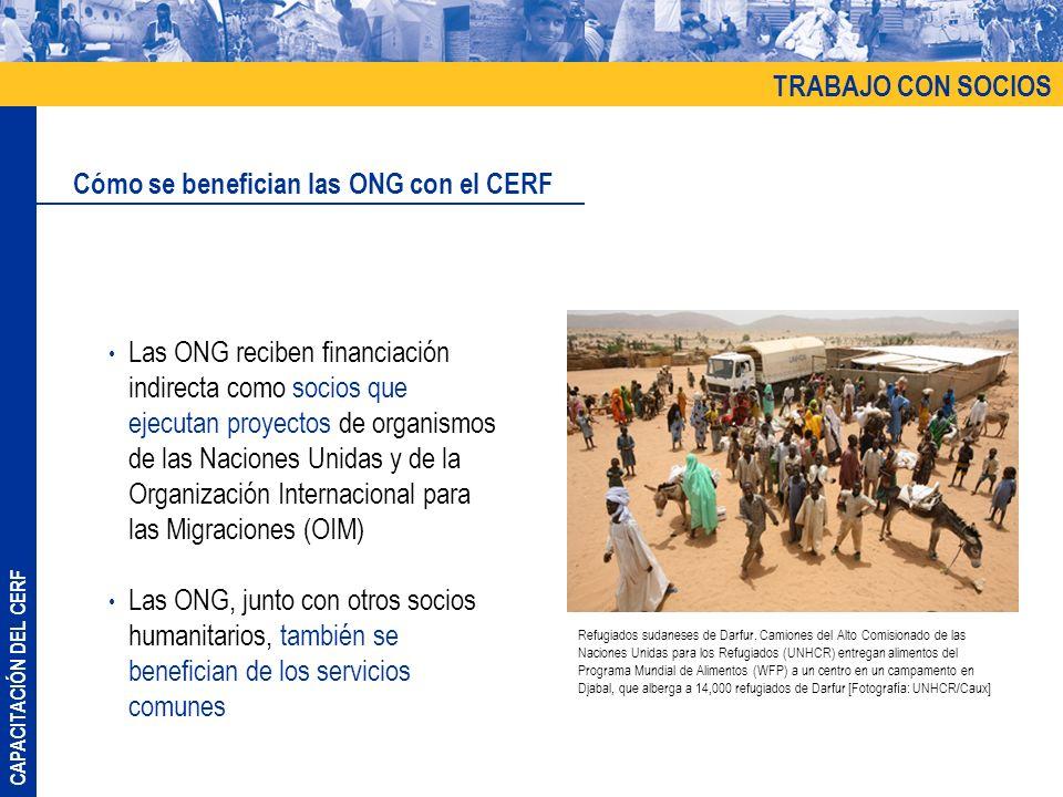 Cómo se benefician las ONG con el CERF