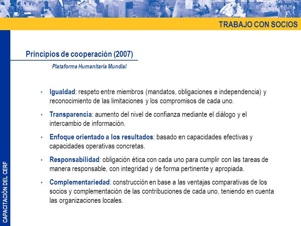 Principios de cooperación (2007)