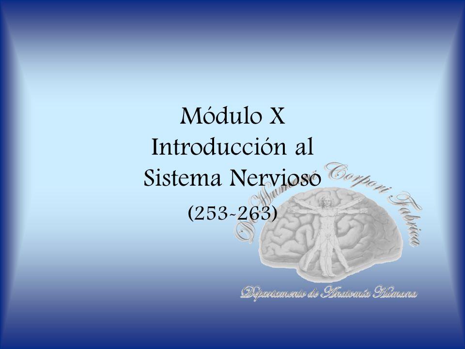 Módulo X Introducción al Sistema Nervioso