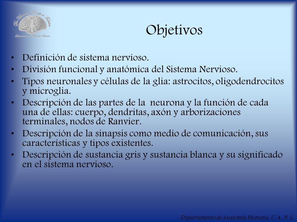 Objetivos Definición de sistema nervioso.