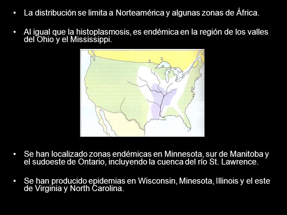 La distribución se limita a Norteamérica y algunas zonas de África.