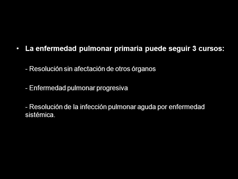 La enfermedad pulmonar primaria puede seguir 3 cursos: